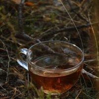 Чашка Чая. :: Илона Миллер