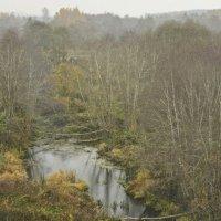 Нехоженые тропки и болота.. :: Svetlana Sneg