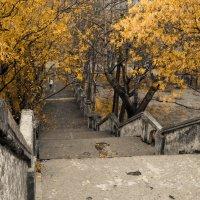 Старый парк :: Степан Филёв