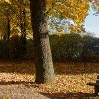 Утро в парке :: Johann Lorenz