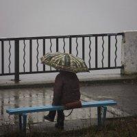 Под покровом тумана :: dmitriy-vdv