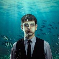 under water :: Артём Кожененко