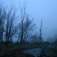 Легкой дымкой осенний туман затушует за речкой пейзажи... :: Евгений Юрков