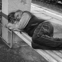 Смотрит сны...и мечтает о тёплой семейке :: Ирина Данилова