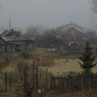 Туманный день. :: Владимир. Ермаков