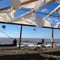Ривьера после урагана :: Tata Wolf