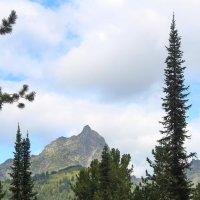 Вид на вершину Птица :: Лада Котлова