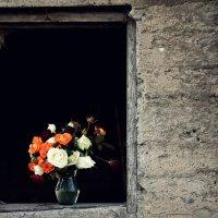 в рамке на черном :: KanSky - Карен Чахалян