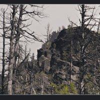Старые скалы :: Алексей Хвастунов