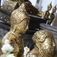 thailand :: Denis Polyakov