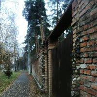 Спрячь за высоким забором девчонку - Выкраду вместе с забором... :: Ольга Кривых