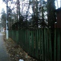 На забор взобрался вор. Глядь - ещё один забор. Перелез через второй, -Третий высится горой. :: Ольга Кривых