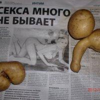 Чудеса природы :: Елена Михайловна Петрова