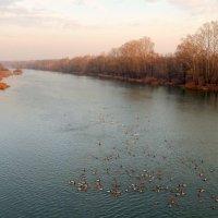 Река в огне горящих берегов, течёт , с собою осень унося....... :: Hаталья Беклова
