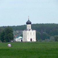 Церковь Покрова на Нерли. :: Oleg4618 Шутченко