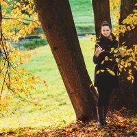 Осень :: Ирина Шмидт