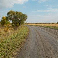 Дорога :: андрей Язовских