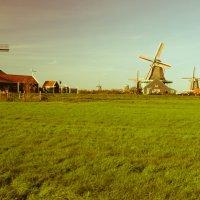 Классика Нидерландов :: Nina Uvarova