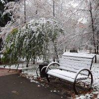 Первый снежок :: LORRA ***