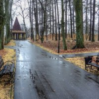 В осеннем парке :: Андрей Куприянов