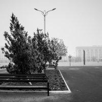 Северный ветер :: Аида Хуснутдинова