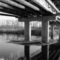 Люди часто одиноки, потому что они строят стены вместо мостов и тонут в своей же грусти. :: Валентина ツ ღ✿ღ