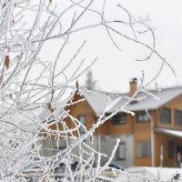 Зимушка-зима :: Валентина Дьяконова