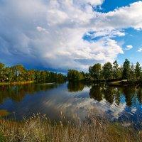 Озеро на даче :: Сергей Ратушняк