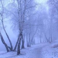 Зимнее утро :: ARS