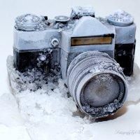 ice :: Anton Fedoseev