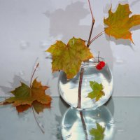 Падают, падают листья....Ну и пусть за то, прозрачней свет....... :: Павлова Татьяна Павлова