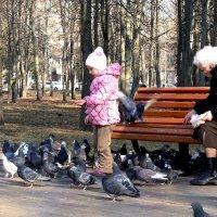 В парке :: Анатолий Бугаев