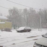 Городской снегопад :: Татьяна Ломтева