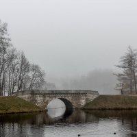 В тумане :: Алёнка Шапран