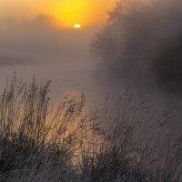 Холодное утро :: Сергей Корнев