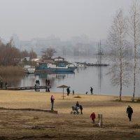 """Поздняя осень, туман и  """"И этот миг называется - жизнь"""" :: Елена Ахромеева"""