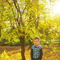 Теплая осень :: Юлия Роденко