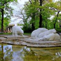 в берлинском зоопарке :: Ольга