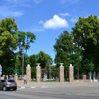 ворота в детство :: Алексей Клименко