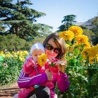 Никитский Ботанический сад :: Максимилиан Штейн-Цвергбаум