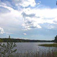 Над озером :: Наталья