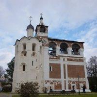 Звонница Спасо-Евфимиева монастыря. :: Galina Leskova