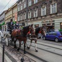 Старый город(Краков) :: Kate Bahdanovich