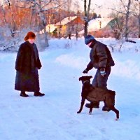 Зимняя сценка :: Григорий Кучушев