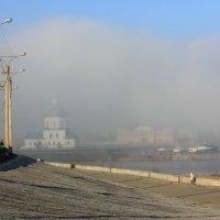 Туманный день :: Ната Волга