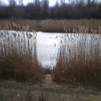 Осенний пейзаж :: Миша Любчик