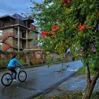 Велосипед и, как в кино, дорога, дом похожий, где я? :: Ирина Данилова