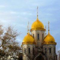 Ноябрьское солнышко... :: Юлия Назаренко