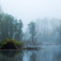 Водный дух :: Сергей Митченко
