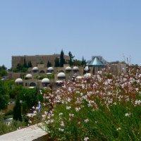 Новый Иерусалим. :: Чария Зоя